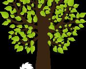spitz in the park logo