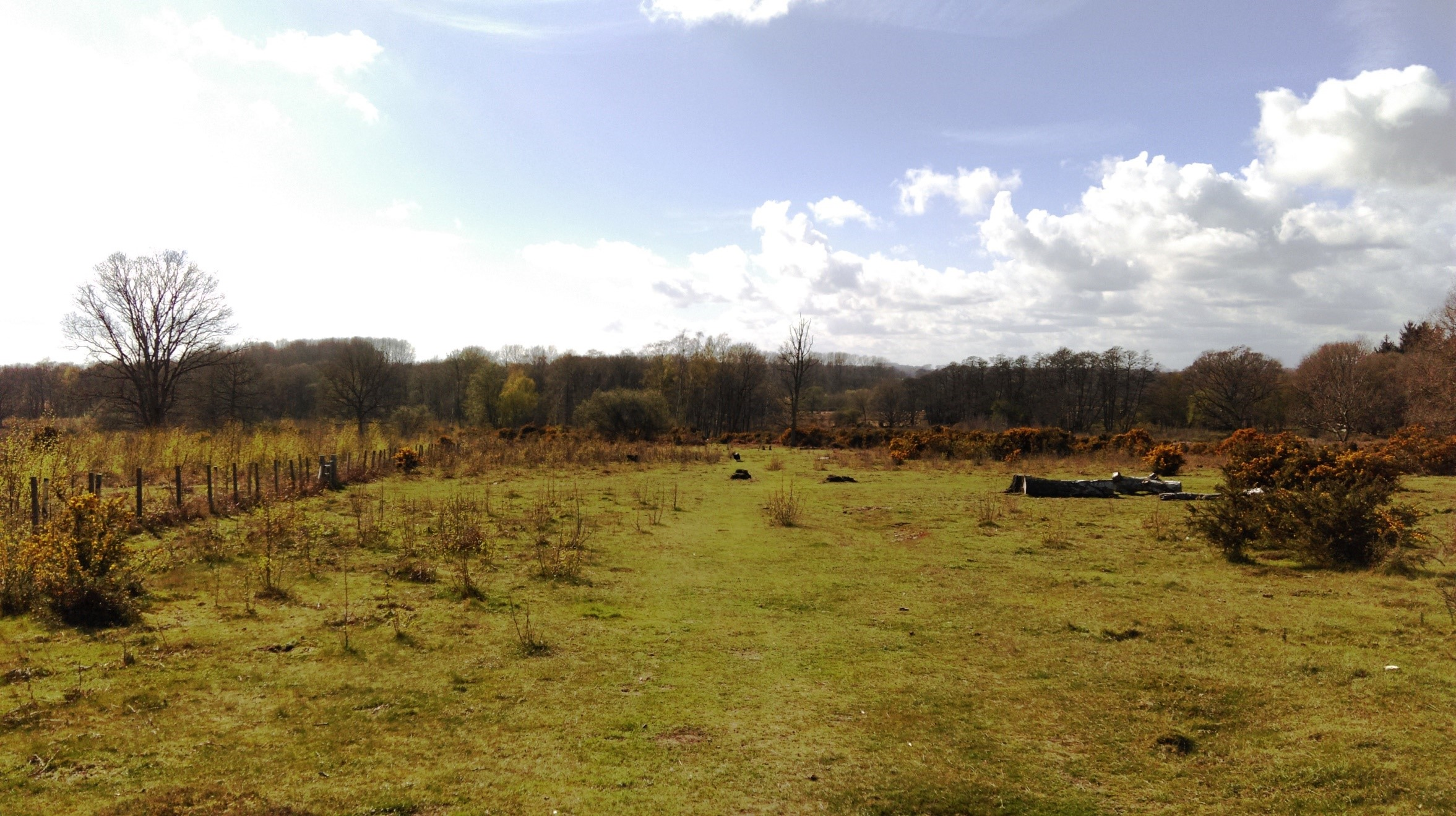 hothfield walk
