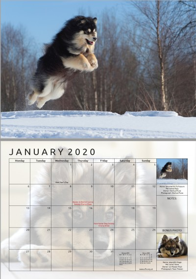 sample layout for January 2020